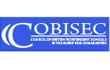 COBISEC award image